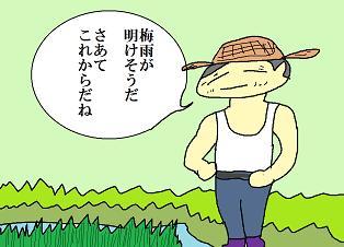 田んぼの事7月末