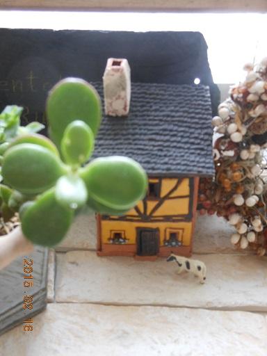 木組みの家と牛さん