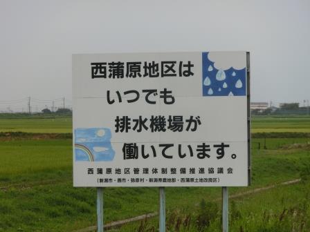 2014 08 新潟干拓編11