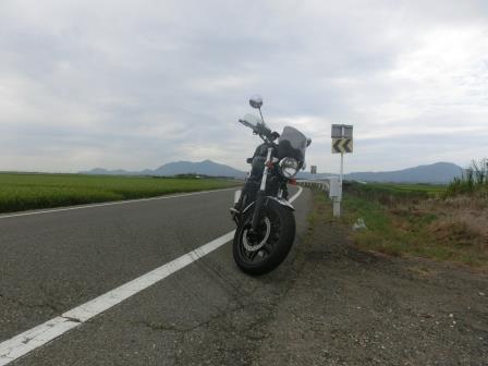 2014 08 新潟干拓編13