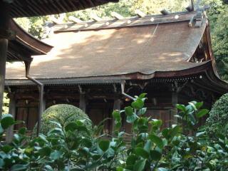 多田神社本殿