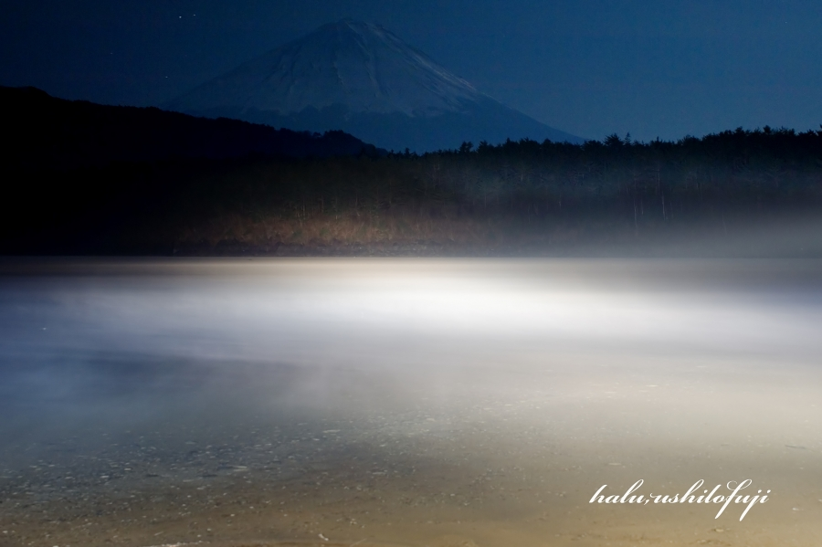 西湖 ライトアップ_filtered