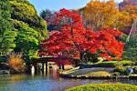 六義園i紅葉