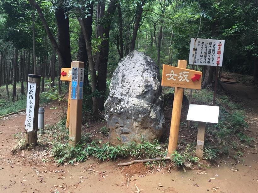 hiwadayama117.jpg