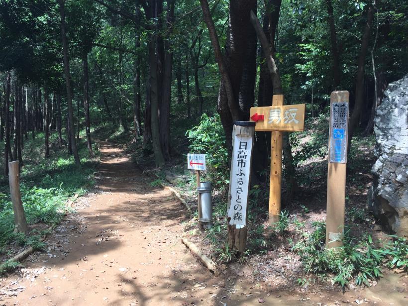 hiwadayama23.jpg