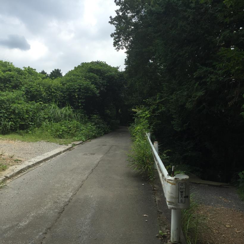 hiwadayama96.jpg