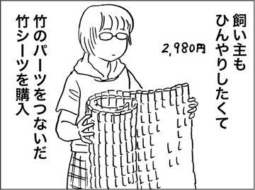 kfc00385-6