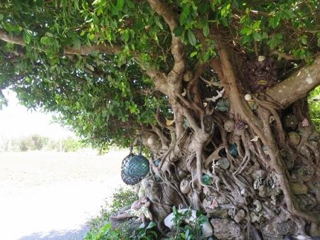 モンパの木さん