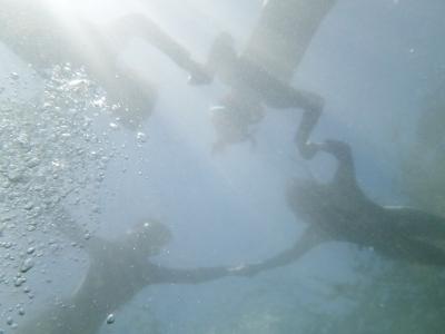 08-06 水中から