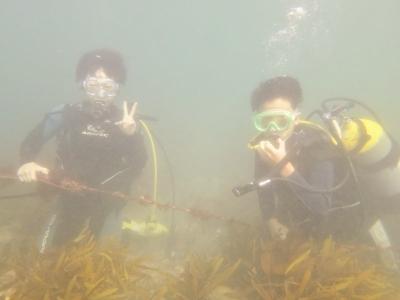 08-06 体験ダイビング