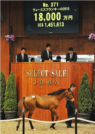 【競馬】最近のセレクトセール高額馬って出来レースだよな?