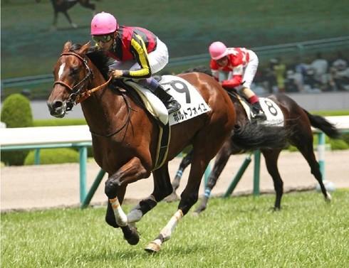 【武豊】が本当に強い馬にデビューから乗って欲しい