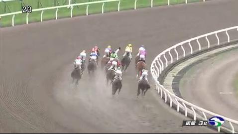 【競馬】菱田、落馬事故で脳挫傷の疑い