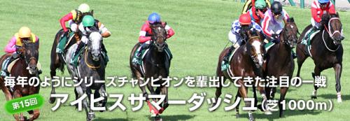 【競馬】アイビスサマーダッシュのワクワク感は異常