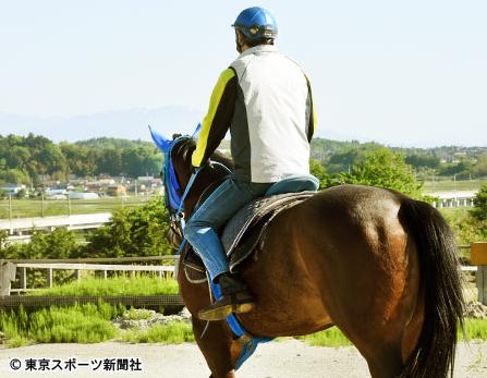 【ルージュバック】が札幌記念を楽勝する可能性について