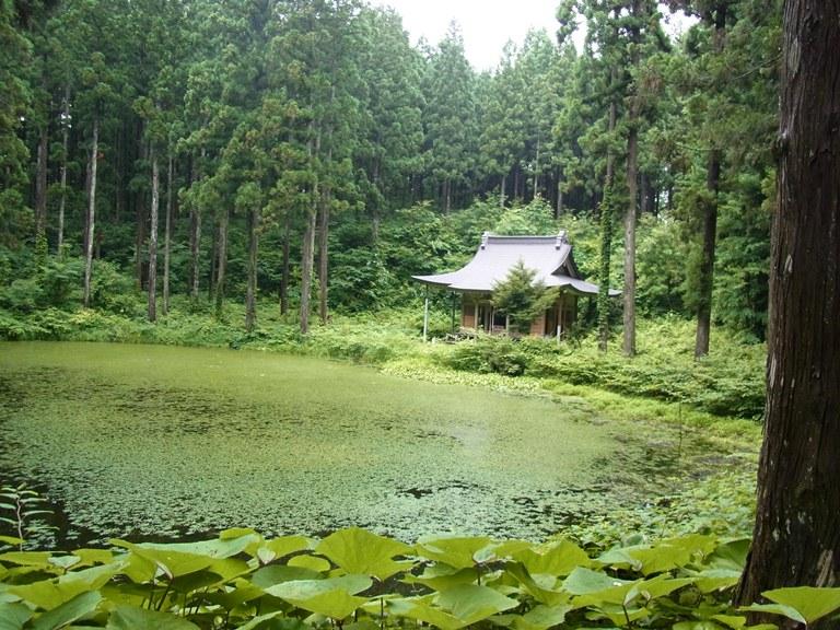 小沼神社の佇む小沼の景観