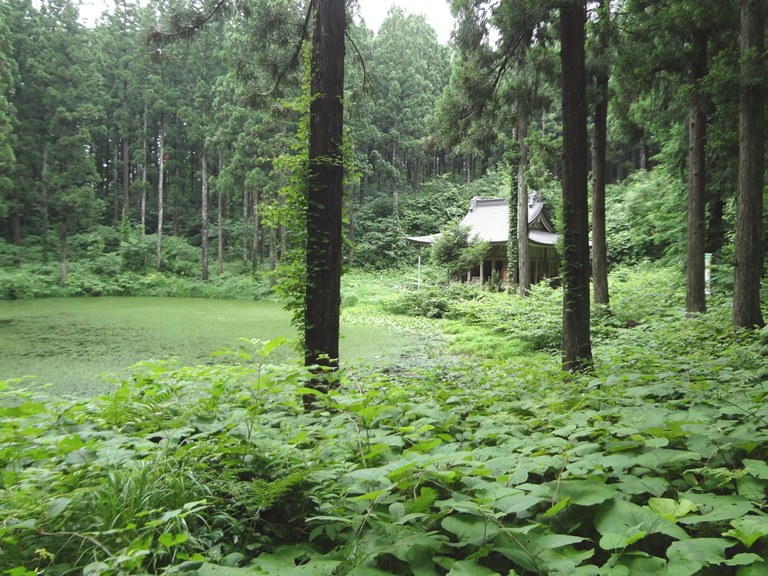 小沼神社と小沼の景観