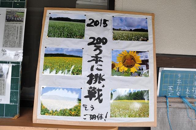 DSC_0570_201508062211559fb.jpg