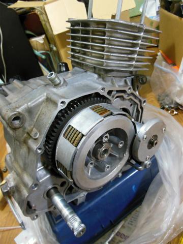 DSCN5038.jpg