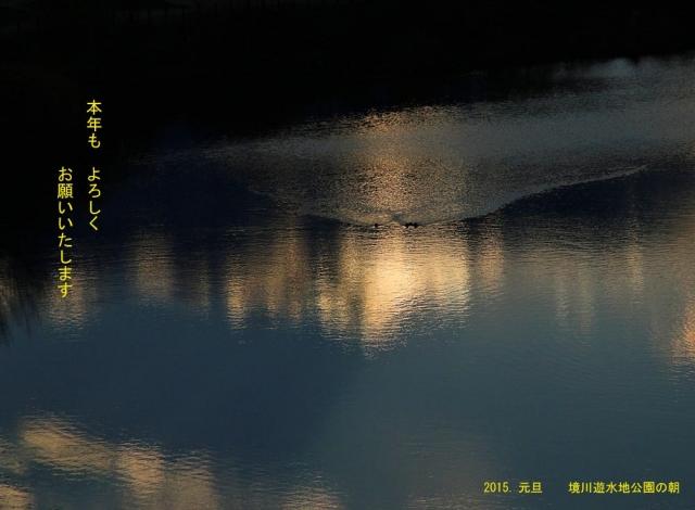 IMG_0104のコピー