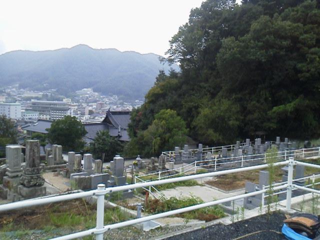 27819senseiohaka2.jpg