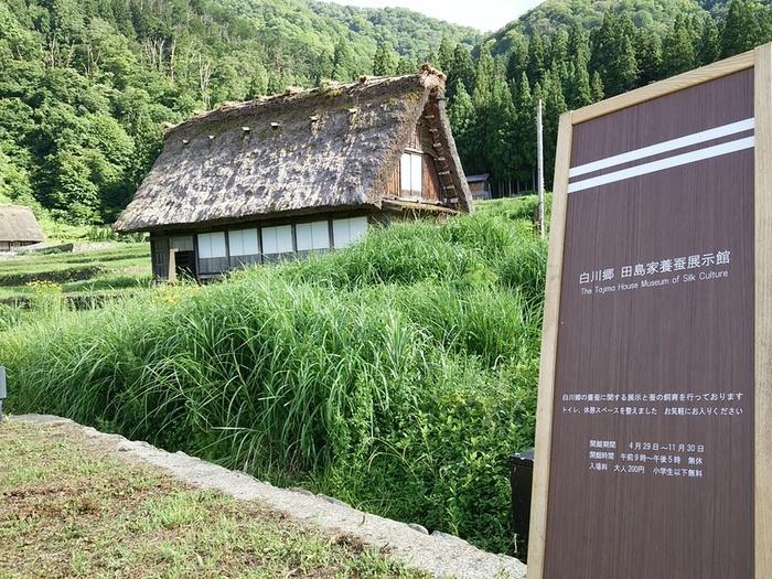 ◎白川郷 田島家養蚕展示館 ①
