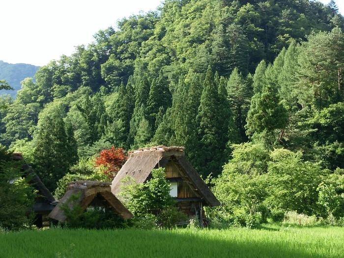 世界遺産白川郷と温泉で今年の家族旅行は決まり♪ ②