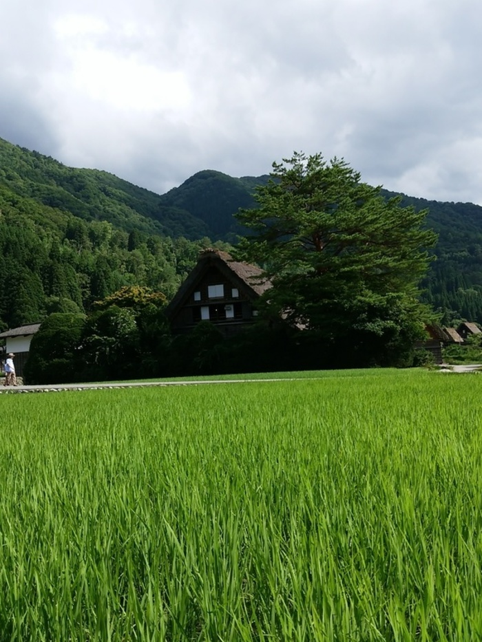 ★田舎満喫の夏休み★⑤