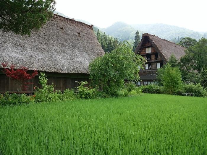 夏の旅行は、人の多いお盆を過ぎてからゆっくりと・・・♪白川郷へ ②