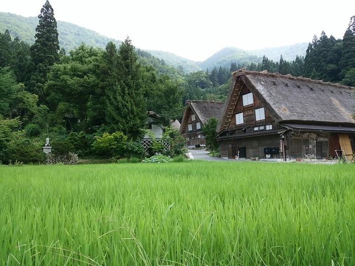 夏の旅行は、人の多いお盆を過ぎてからゆっくりと・・・♪白川郷へ ④