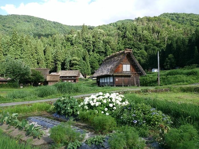 夏の旅行は、人の多いお盆を過ぎてからゆっくりと・・・♪白川郷へ ⑦