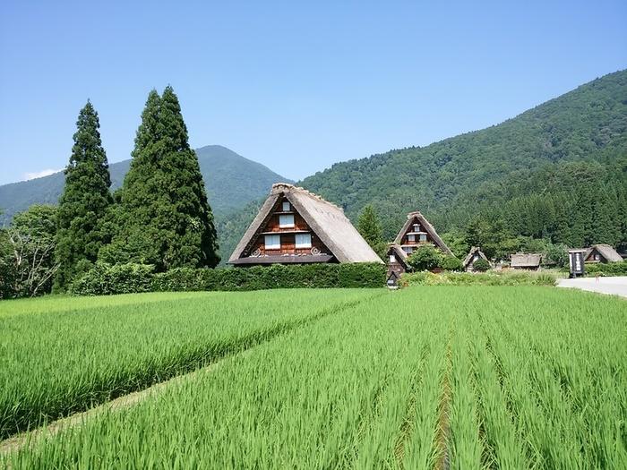夏の旅行は、人の多いお盆を過ぎてからゆっくりと・・・♪白川郷へ ⑧