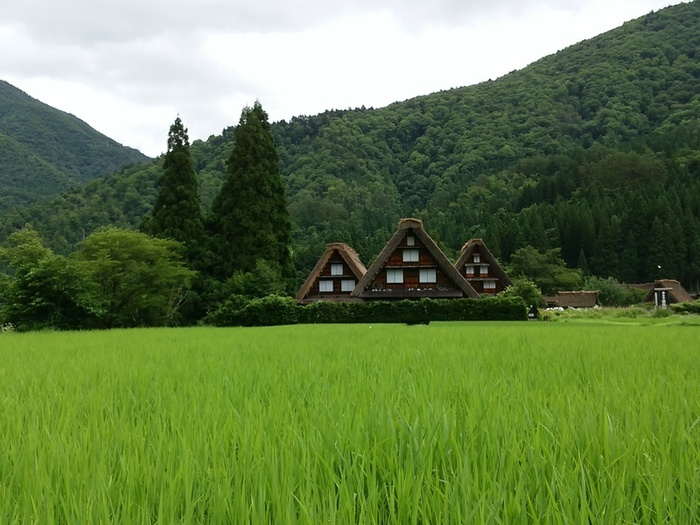 お盆休みはご家族、友人、恋人と世界遺産の白川郷を観光しませんか。 ④