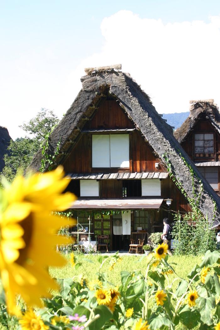 お盆休みはご家族、友人、恋人と世界遺産の白川郷を観光しませんか。 ⑦