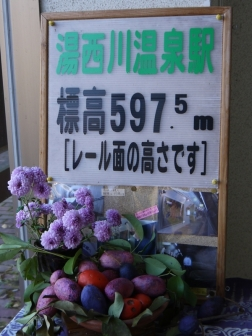 P1410694.jpg