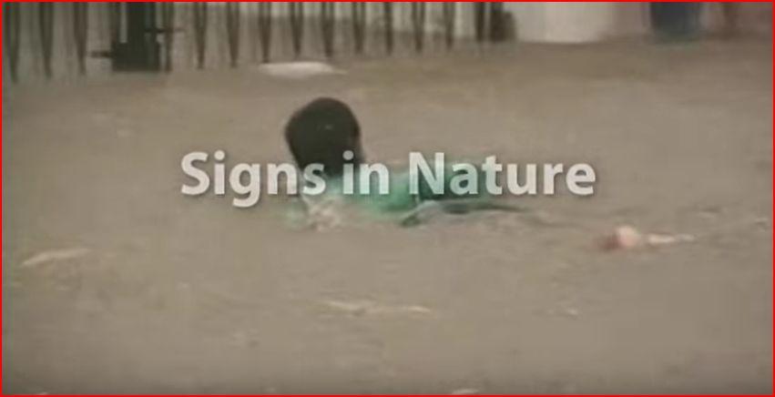 自然からのサイン