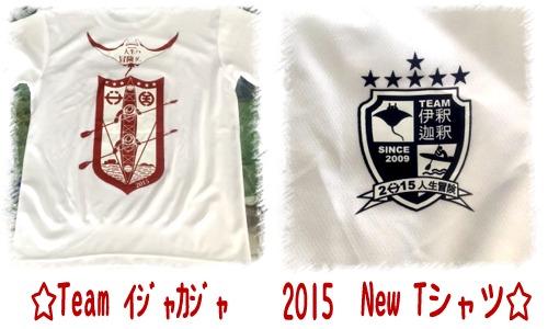 2015 NEW Tシャツ