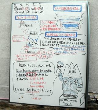 2015-7-31tinne030-1.jpg