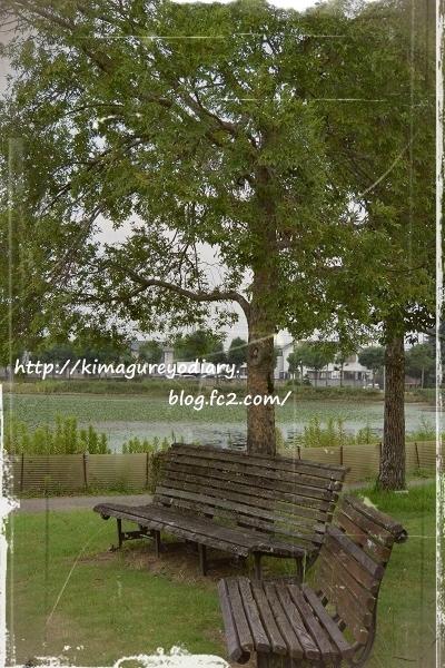 平池公園・2015・8月12日