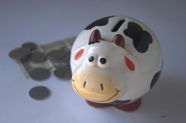 piggy-bank-390528_1280.jpg