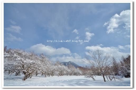 冬の奥日光♪