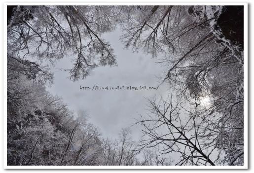日光冬の空