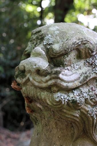 蜛蝫神社の狛ワンコ