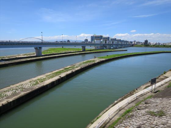 2015年夏赤川河川敷近辺02