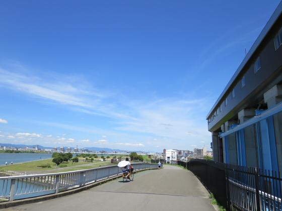 2015年夏赤川河川敷近辺06