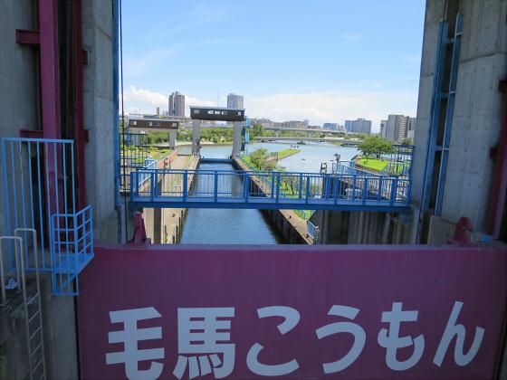 2015年夏赤川河川敷近辺09