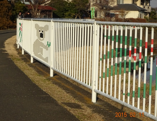 フェンスとコアラ2