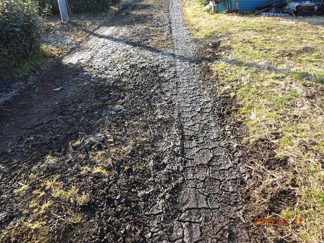 まだ霜が凍っている農道