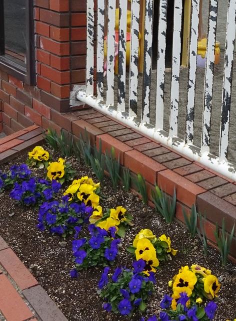 花壇と錆取りを終えたフェンス