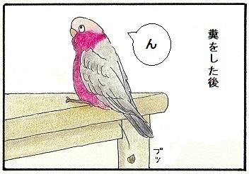 自分の糞に動じない鳥1